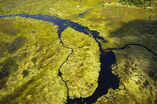 Kavango-Zambezi-Region, Okavango Delta